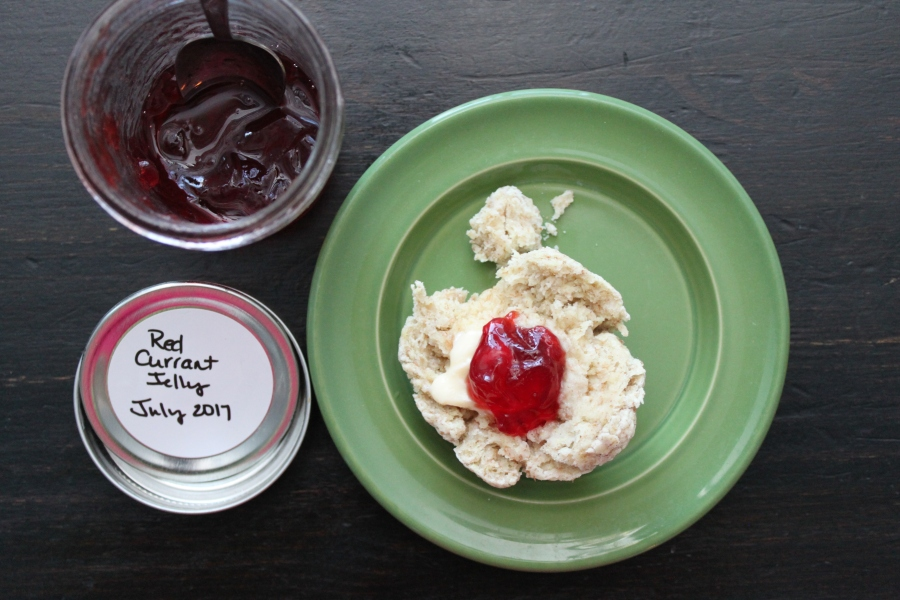 vegan biscuits with red currant jelly
